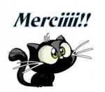 merci chaton noir.jpg